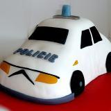 dort auto bílé policie